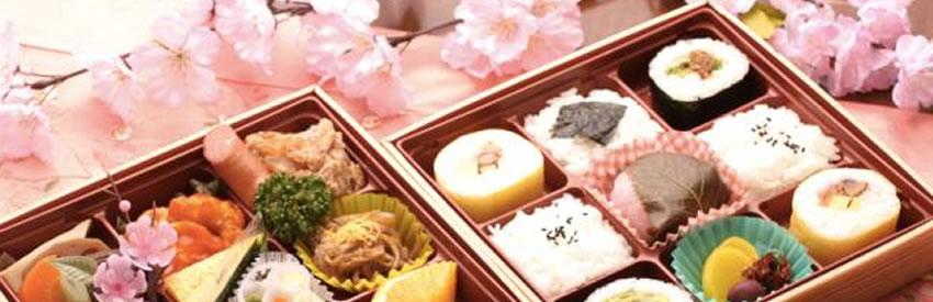 Hanami Bento Box