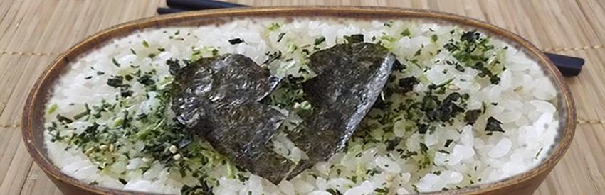 Shikaeshi Bento